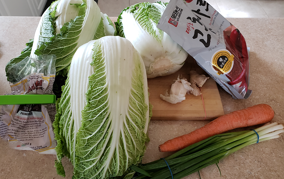 Kimchi ingredients: cabbage, gojugaru, salt, green onion, garlic, ginger and carrot