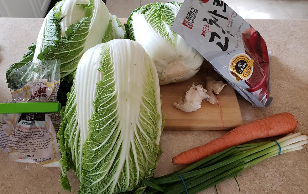 Kimchi ingredients: cabbage, gojugaru, salt, green onion, garlic, ginger and carrot